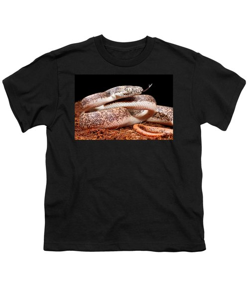 Savu Python In Defensive Posture Youth T-Shirt