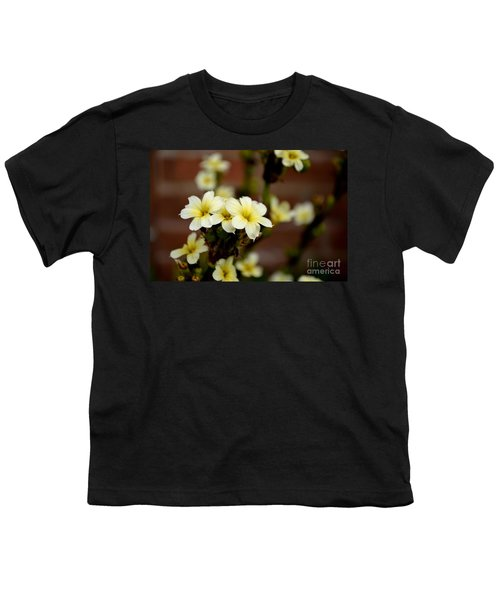 Sisyrinchium Striatum Youth T-Shirt