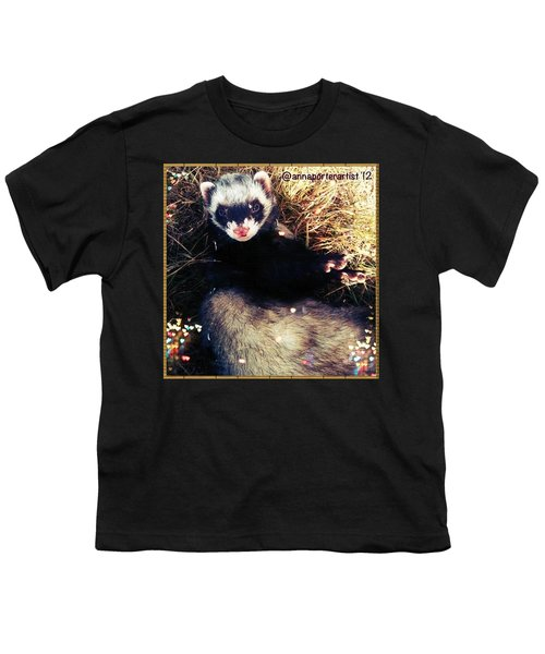 Sometimes We Like To Roll In The Straw #ferrets #pets Youth T-Shirt