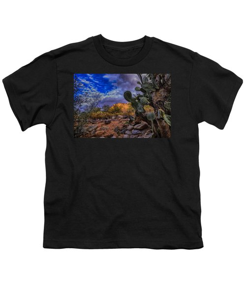 Youth T-Shirt featuring the photograph Sonoran Desert 54 by Mark Myhaver