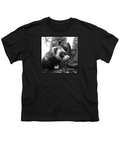 Sweet Little Nicky Chillin In A Tree Youth T-Shirt by Anna Porter
