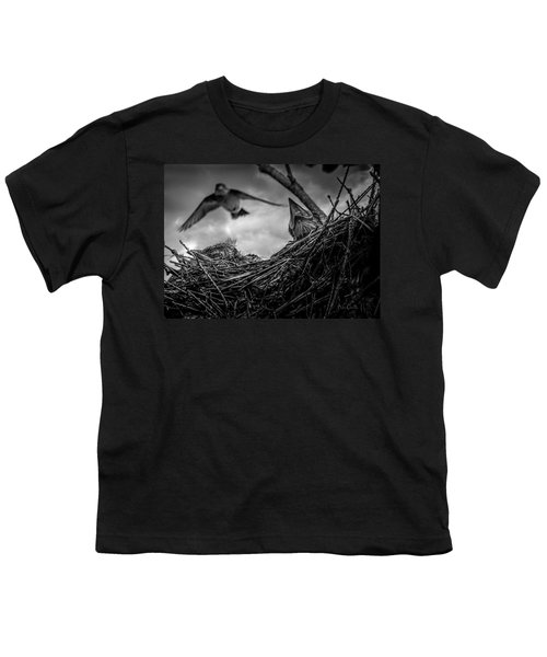 Tree Swallows In Nest Youth T-Shirt