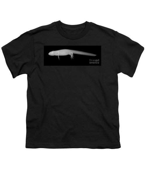 Newt Youth T-Shirt by Ted Kinsman