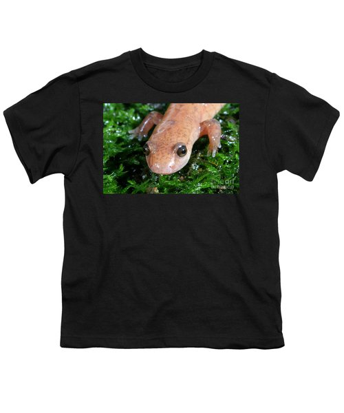 Spring Salamander Youth T-Shirt by Ted Kinsman