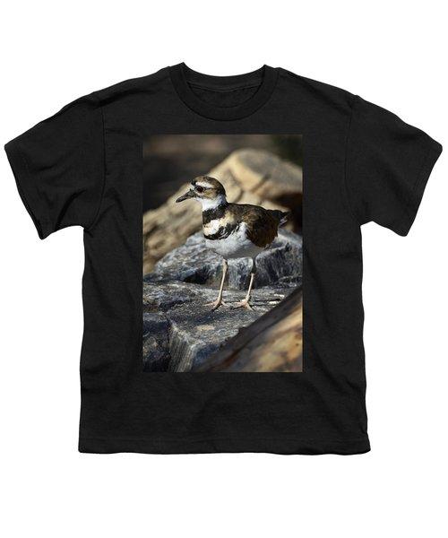 Killdeer Youth T-Shirt by Saija  Lehtonen