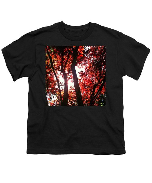 Reaching For Glory - Afternoon Light Youth T-Shirt
