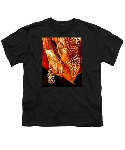 Chinese Lantern Youth T-Shirt