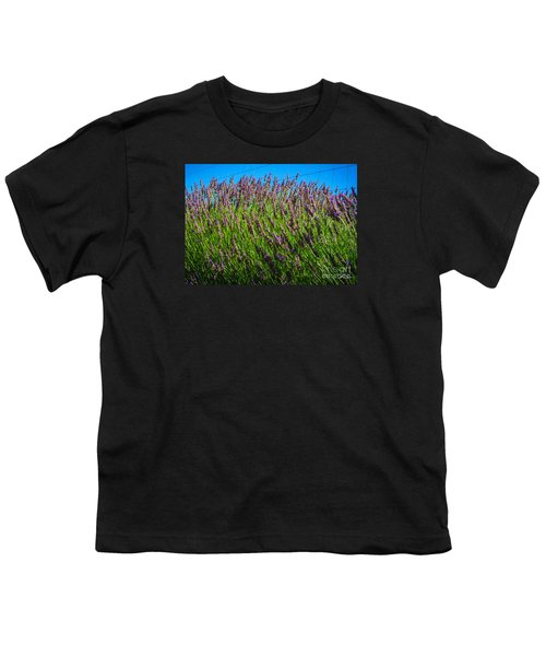 Country Lavender Iv Youth T-Shirt