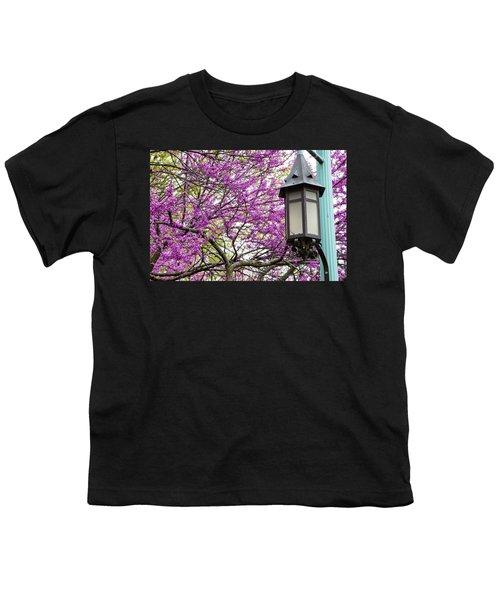 Michigan State University Spring 7 Youth T-Shirt by John McGraw