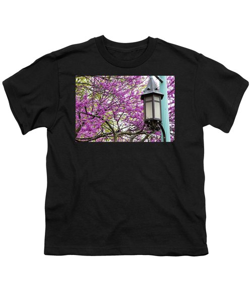 Michigan State University Spring 7 Youth T-Shirt