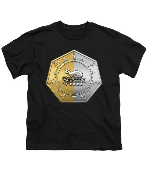 17th Degree Mason - Knight Of The East And West Masonic Jewel  Youth T-Shirt