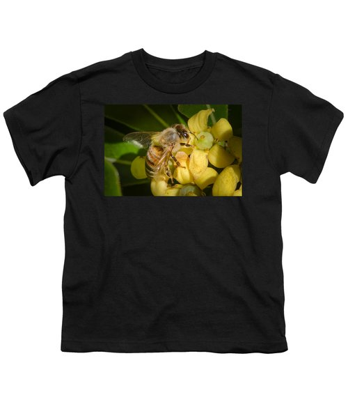 Youth T-Shirt featuring the photograph Bees Gathering From Pittosporum Flowers by Jim Thompson
