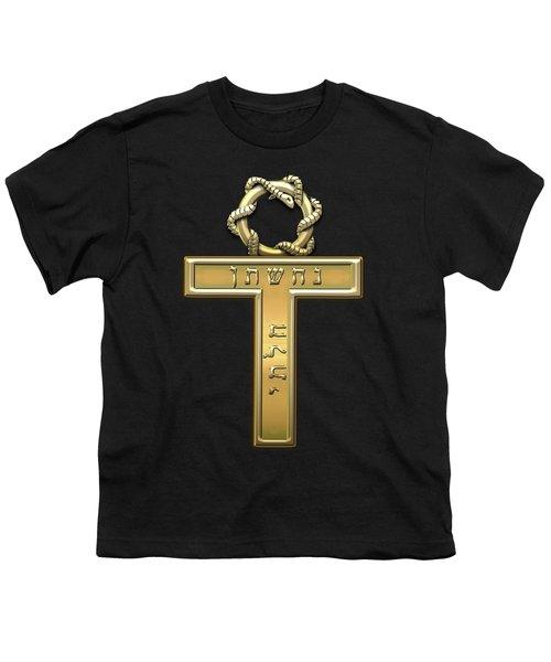 25th Degree Mason - Knight Of The Brazen Serpent Masonic Jewel  Youth T-Shirt by Serge Averbukh