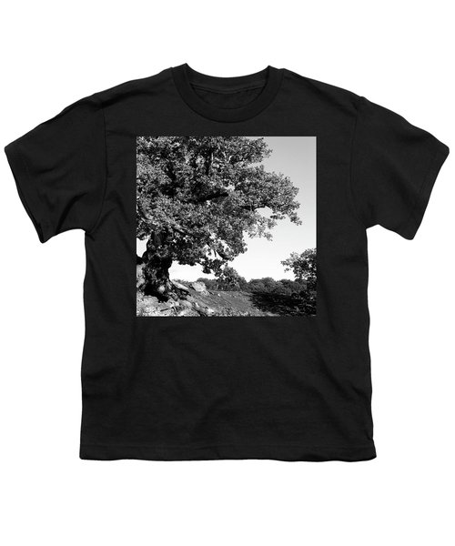 Ancient Oak, Bradgate Park Youth T-Shirt by John Edwards