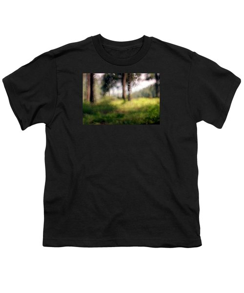 At Menashe Forest Youth T-Shirt by Dubi Roman
