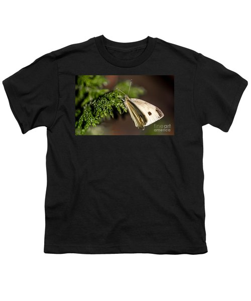 Cabbage Butterfly On Evergreen Bush Youth T-Shirt