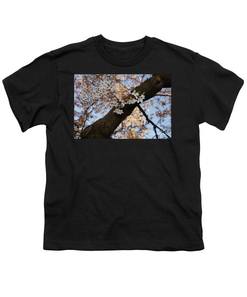 Cherry Blossoms Youth T-Shirt by Megan Cohen