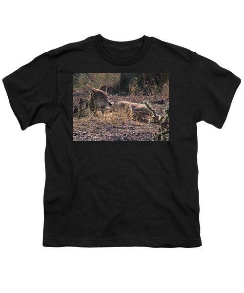 Resting Coyote Youth T-Shirt