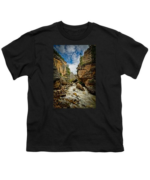 Crazy Woman Canyon Youth T-Shirt by Rikk Flohr
