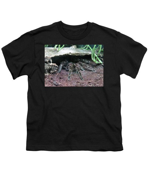 Desert Tarantula Youth T-Shirt