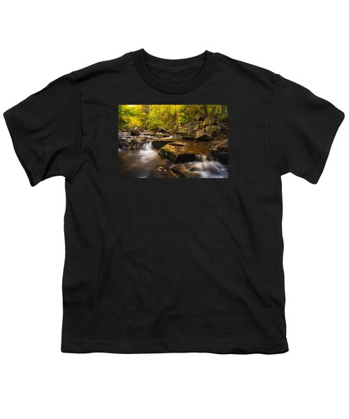 Fall At Gunstock Brook Youth T-Shirt