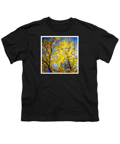 Golden October Tree In Fall Youth T-Shirt