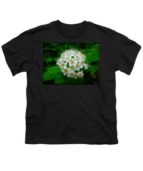 Hawthorn Hearts Youth T-Shirt