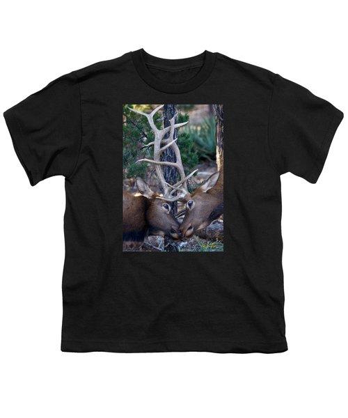 Locking Horns - Well Antlers Youth T-Shirt by Rikk Flohr