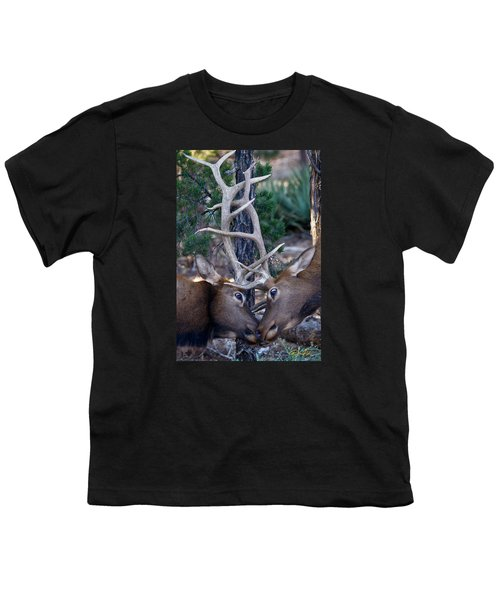 Locking Horns - Well Antlers Youth T-Shirt