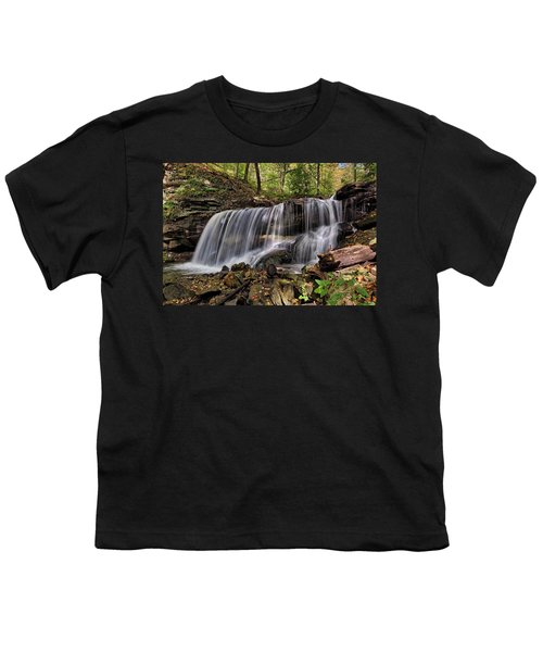 Lower Tews Falls Youth T-Shirt