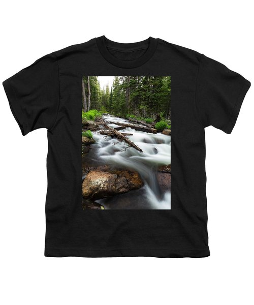 Youth T-Shirt featuring the photograph Magic Mountain Stream by James BO Insogna
