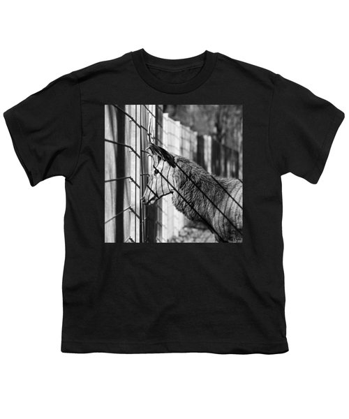 #monochrome #canon #cage #blackandwhite Youth T-Shirt by Mandy Tabatt