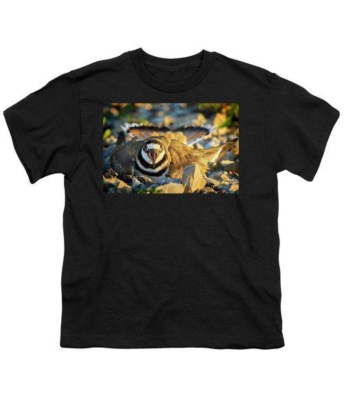 Mother Killdeer 1 Youth T-Shirt