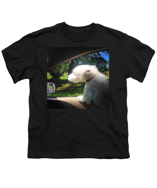 Trip To The Groomer Youth T-Shirt