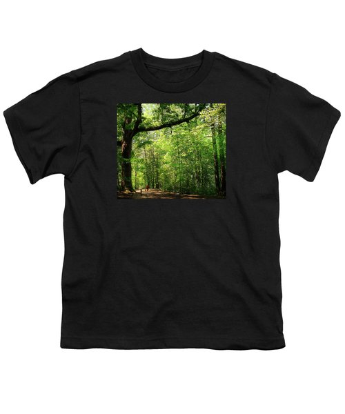 Paris Mountain State Park South Carolina Youth T-Shirt by Bellesouth Studio