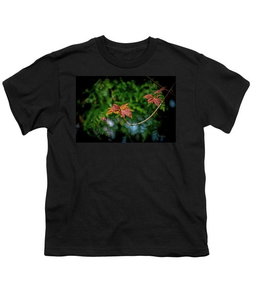 Red Maple Leaves Youth T-Shirt