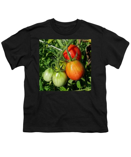 ripening #photography #garden Youth T-Shirt by Andrew Pacheco