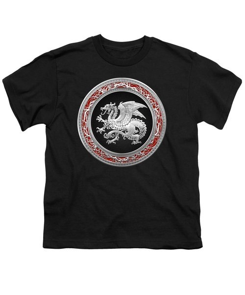Silver Icelandic Dragon  Youth T-Shirt by Serge Averbukh