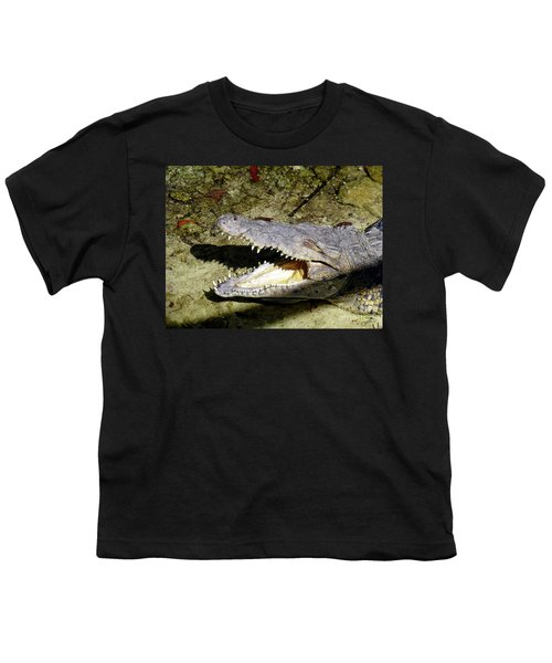 Youth T-Shirt featuring the photograph Sunbathing Croc by Francesca Mackenney