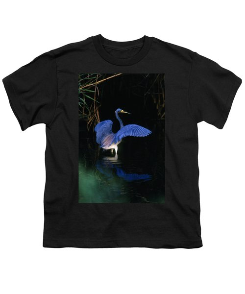 Tri-colored Heron - Fs000031 Youth T-Shirt