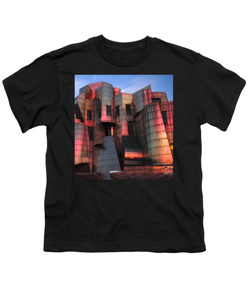 Weisman Art Museum At Sunset Youth T-Shirt by Craig Hinton