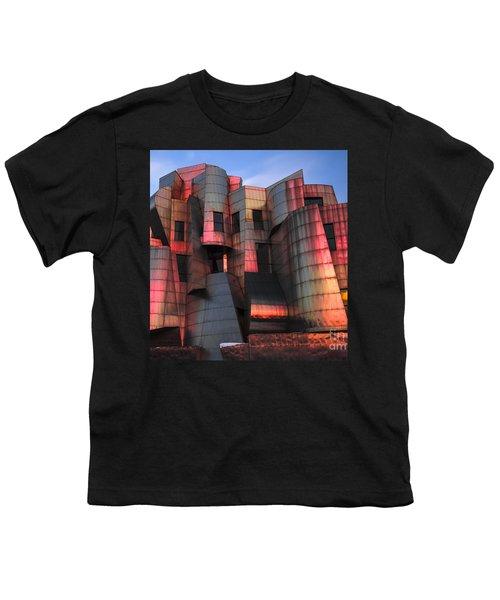 Weisman Art Museum At Sunset Youth T-Shirt