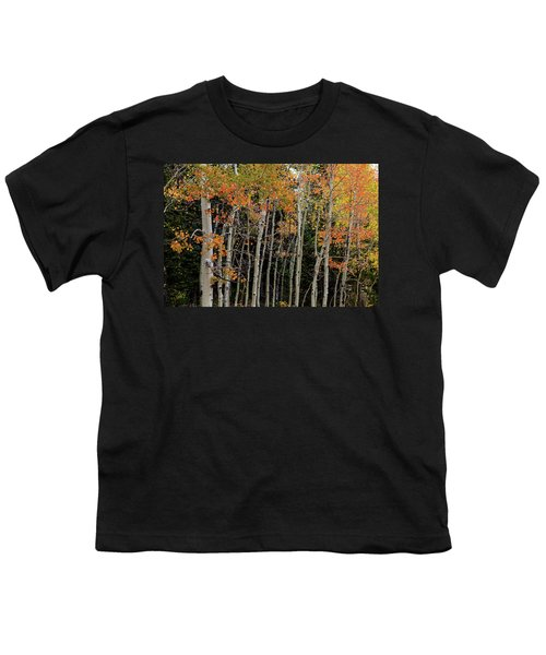 Youth T-Shirt featuring the photograph Autumn As The Seasons Change by James BO Insogna