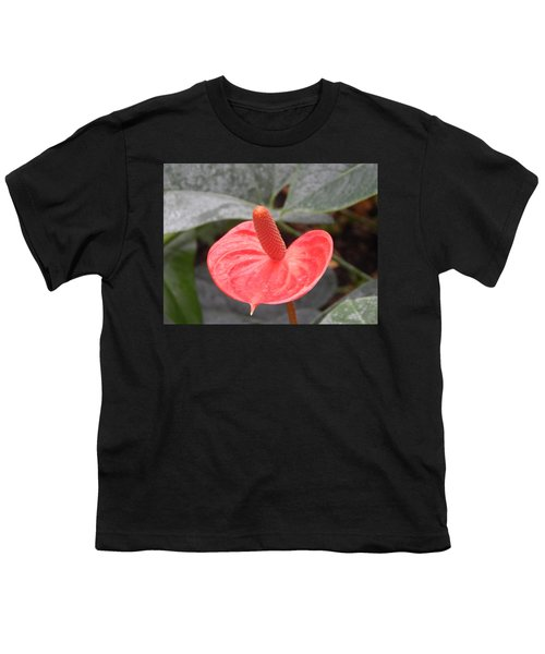 Botanical Garden Plants And Flowers Youth T-Shirt
