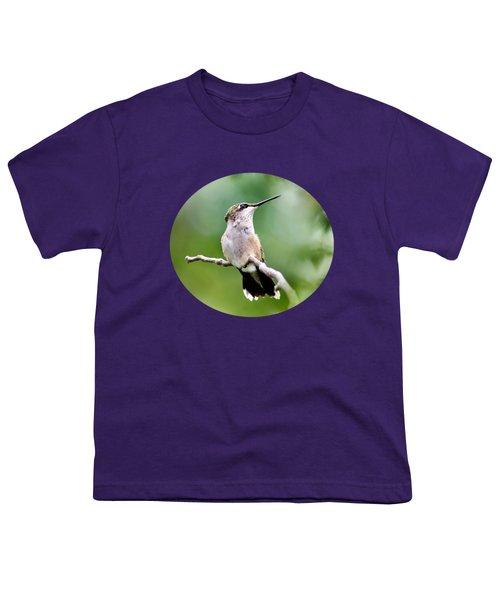 Charming Hummingbird Youth T-Shirt by Christina Rollo