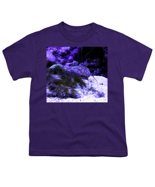 Youth T-Shirt featuring the photograph Sea Spider by Francesca Mackenney