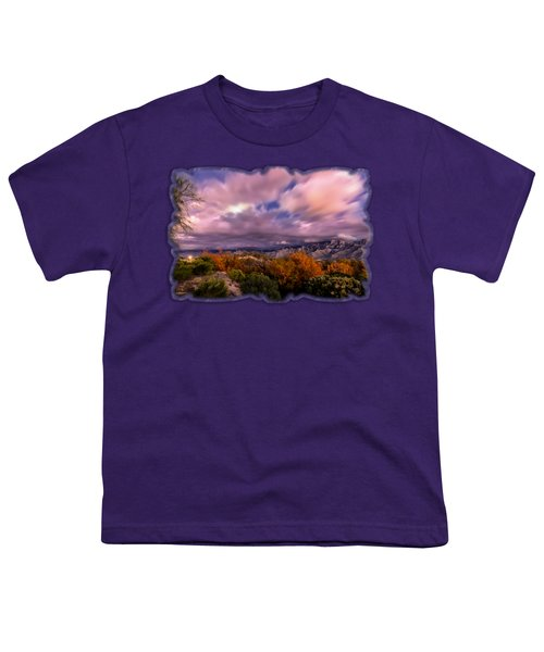 Winter Colors 25 Youth T-Shirt by Mark Myhaver