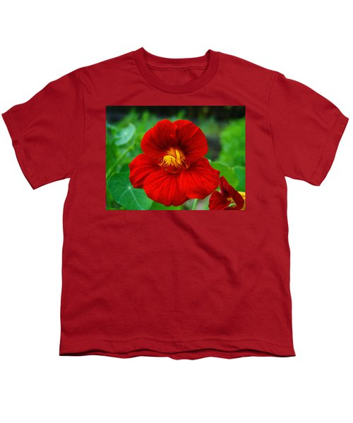 Red Daylily Youth T-Shirt by Bill Barber