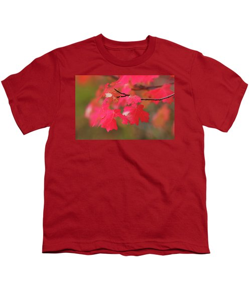 A Flash Of Autumn Youth T-Shirt