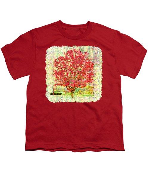 Autumn Musings 2 Youth T-Shirt by John M Bailey
